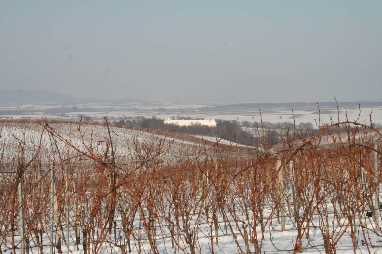 2009-Winter-Ansicht-Schloss.jpg