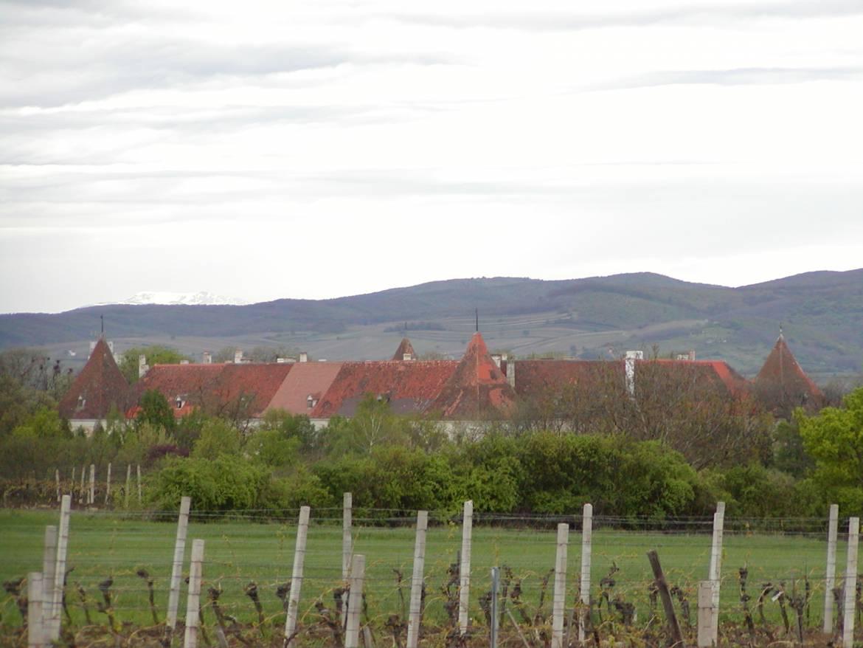 Schloss-Deutschkreutz.jpg