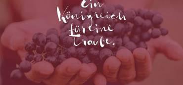"""""""Der Grundstein der besten Weine wird im Weingarten gelegt. …"""