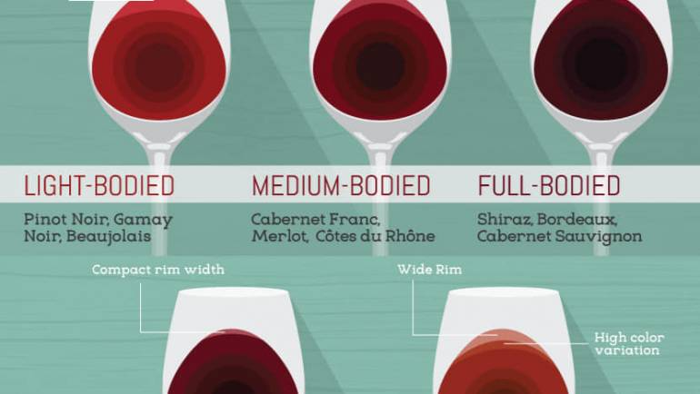 Hier noch ein Überblick über das Farbspektrum der Weine.