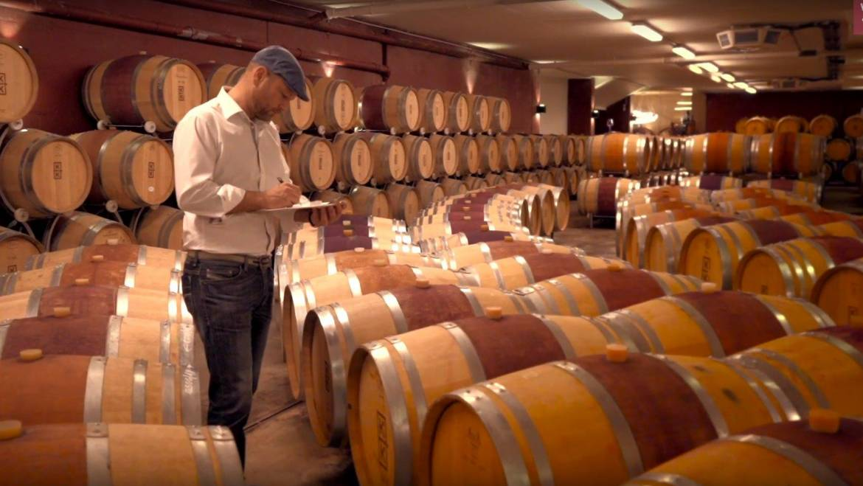 Weingut K+K Kirnbauer – Winzer des Monats April 2020 ansehen
