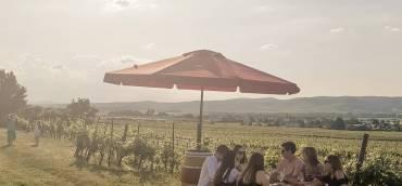 About last weekend!  Wine&Sound  Das schreit nach einer …