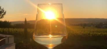 """""""Mit Abstand""""  den schönsten Ausblick auf die Wein…"""