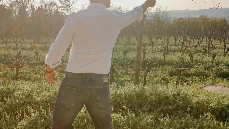Ein neuer Jahrgang erobert die Cabernet Franc Welt! Unser KO…