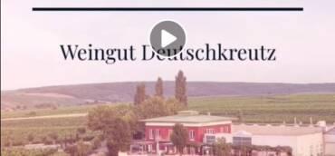 Wie ensteht ein Weingarten? In diesen Wochen im April werden…